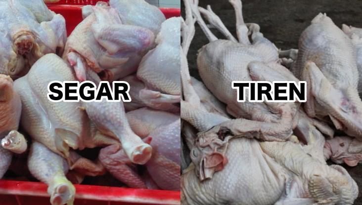 perbedaan daging ayam segar dan tiren