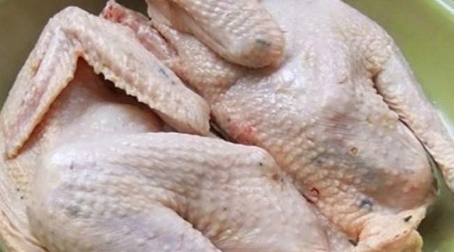 ayam tiren